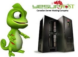 YesUpHost Updates Dedicated Server with Latest Intel CPU