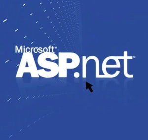 HostForLIFE Launches ASP.NET MVC 5.1.1 Hosting